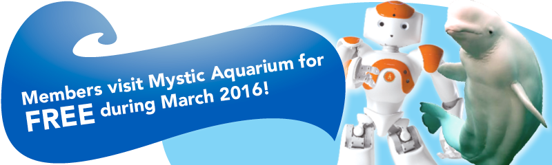 Reciprocal Membership with Mystic Aquarium during March 2016
