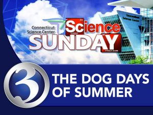 Science Sunday: Dog Days of Summer