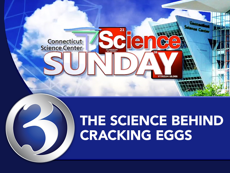 Science Sunday: Science Behind Cracking an Egg