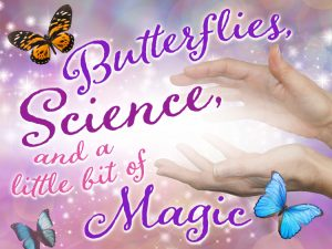 Butterflies, Science and a Little Bit of Magic