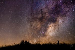 Your Very First Stargazing Trip